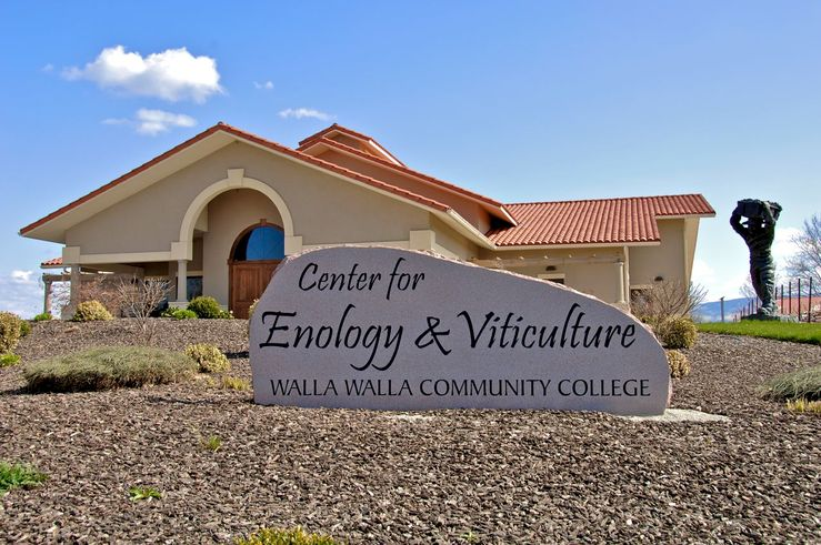 College Cellars Enology&Viticulture_2